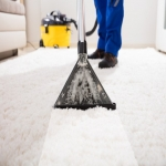 Residential Cleaners in Bridgend 12